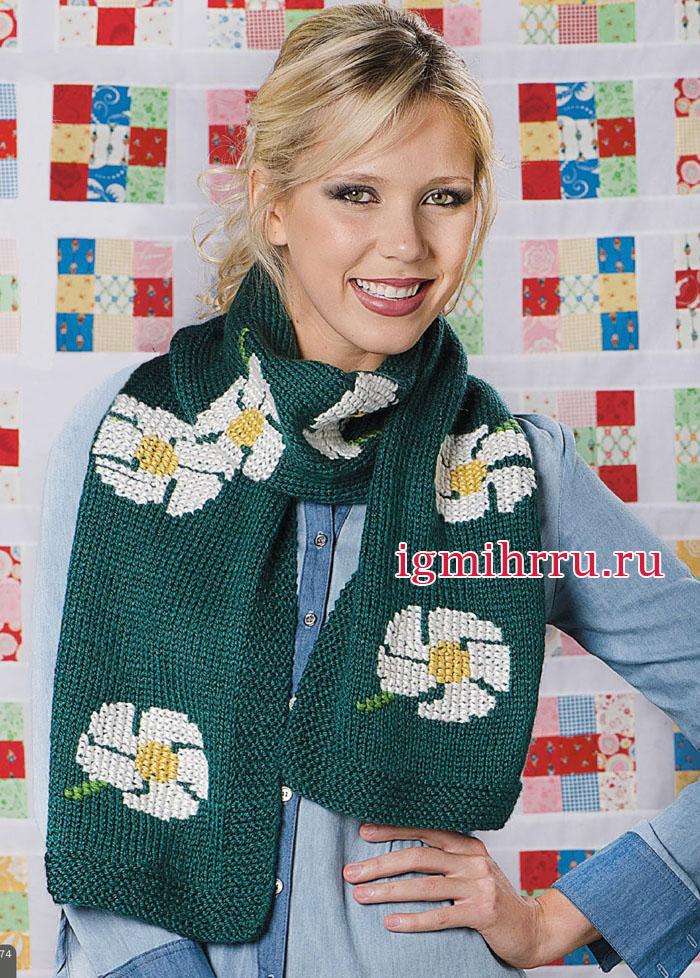 Зеленый шарф с вышитыми ромашками. Вязание спицами